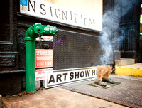 The INSignificant Gallery - SVA Students - Ward Nasse Gallery - 2015