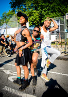 Afropunk Festival - Commodore Barry Park - BK USA - 2014