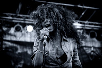 Afropunk Festival - The Bands - Commodore Barry Park - BK USA - 2013