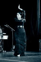 Nelida Tirado - Made in the Bronx presented by BAAD - St Marys Park - BX NYC - 2017