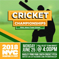 Mayors Cup Cricket - Baisley Pond Park - Jamaica Queens - 2018