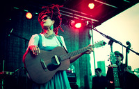 Afropunk Festival - The Bands - Commodore Barry Park - BK USA - 2014