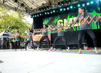 SMD Bhangra - Basement Bhangra 20th Anniversary - Central Park - NYC - 2017